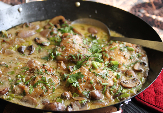 Riesling Chicken & Mushroom Casserole 5